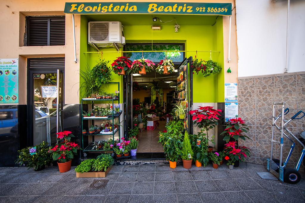 floristeria_beatriz
