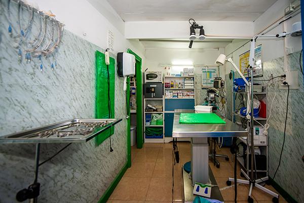 veterinarioGarcia_Glez4